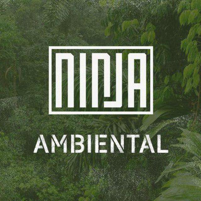 ninja ambiental